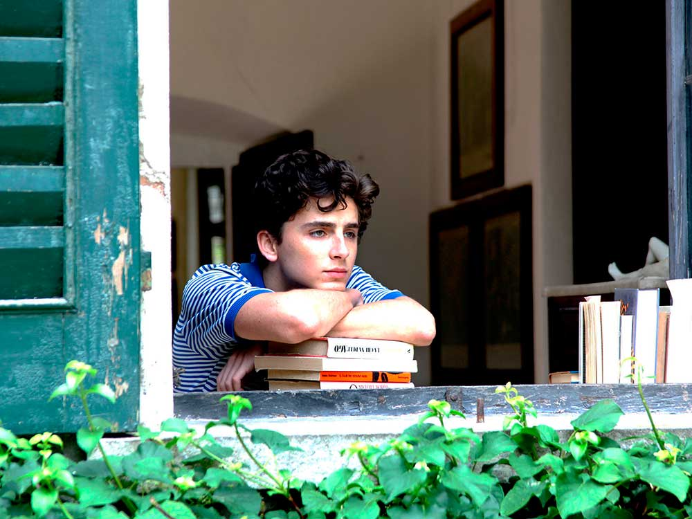 Timothée Chalamet en Call by your name